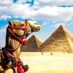 北京-埃及开罗+亚历山大+卢克索+红海8天跟团游