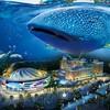 珠海长隆酒店2晚+马戏门票2张+海洋王国门票2张+横琴湾水世界门票2张 2933元/份起
