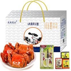洪湖 清水鲜活大闸蟹 全母 现货U型 2.0两/只-2.4两/只 8只礼盒装