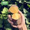 鲜聚德 新鲜现挖红薯 5斤 13.8元包邮(需用券)
