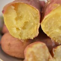 郑家屯 农家 新鲜番薯 5斤