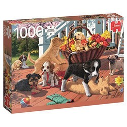 Jumbo 拼图 玩耍的小狗 17246 1000片