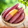 天目山小香薯 地瓜5斤 26.8元(需用券)