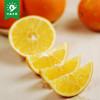 升森水果 四川高山脐橙新鲜水果橙子 批发包邮非赣南冰糖甜橙 26.91元(需用券)