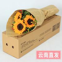 天堂鸟 向日葵鲜花束礼盒 3枝送相思豆