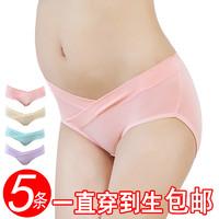 康苗 km05001-4 孕妇低腰纯棉内裤 5条装